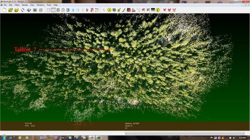 original  RGB coded point cloud of Enchanted Forest - Mokelumne Headwaters