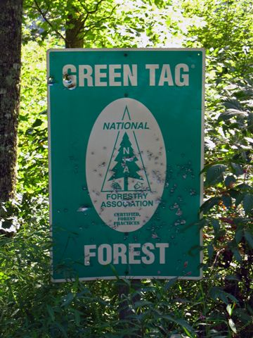 Green Tag Certified Forest.jpg