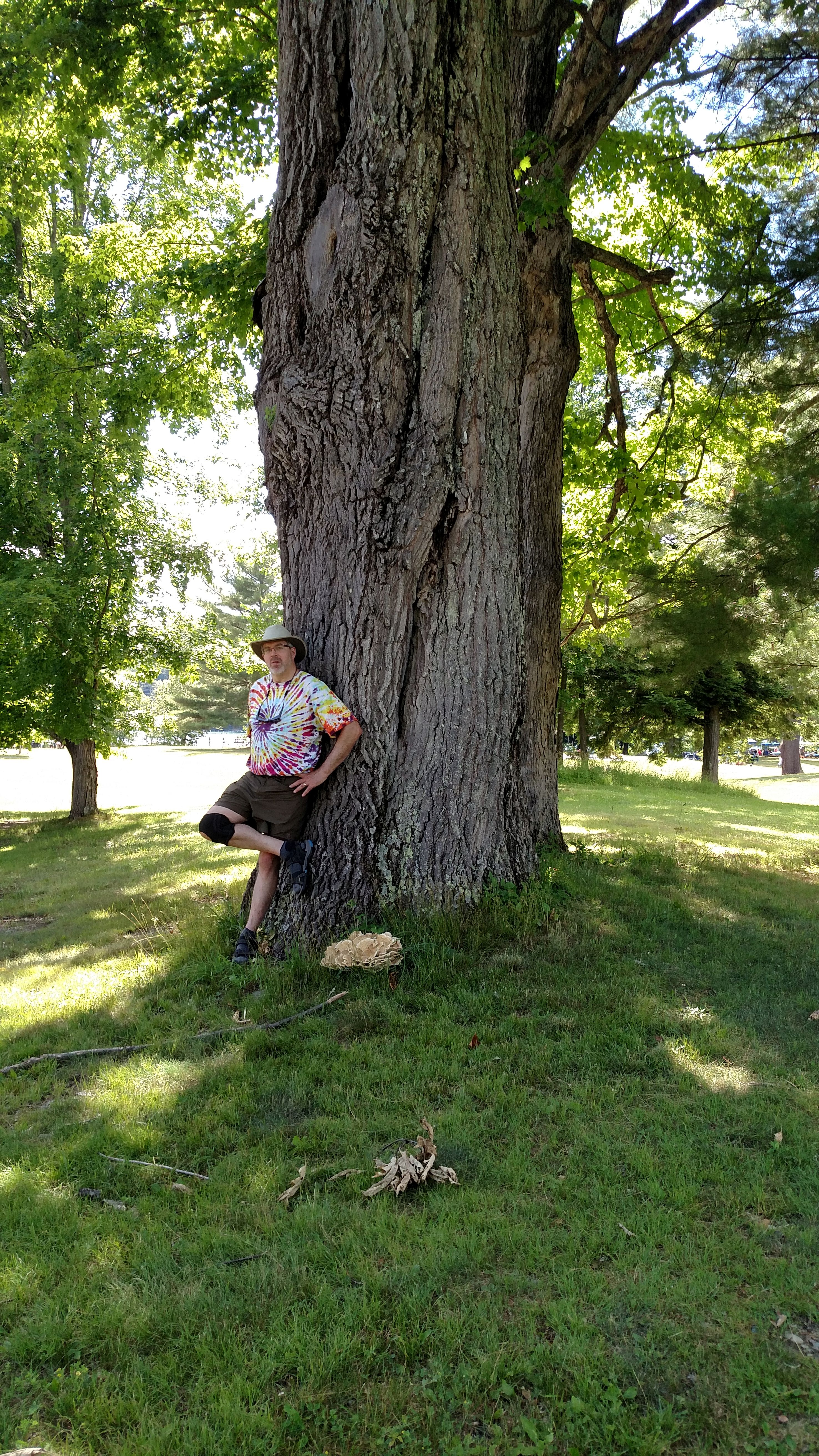 adam with large red Oak at Lake Saint Catherine.jpg