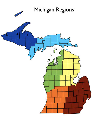 MichiganTreeMaxRegions.001.jpeg