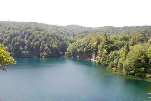 The forests surrounding the lakes are heavy dominated by European beech, but mixed with some spruce and fir. Near the lakes sycamore maple, Italian maple, hop hornbeam, willows and black alder can be seen.